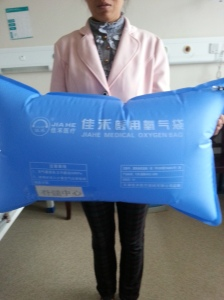 Chinese Medical oxygen pillow