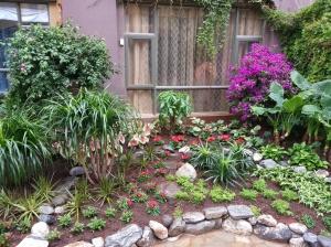 Garden area outside of my bedroom